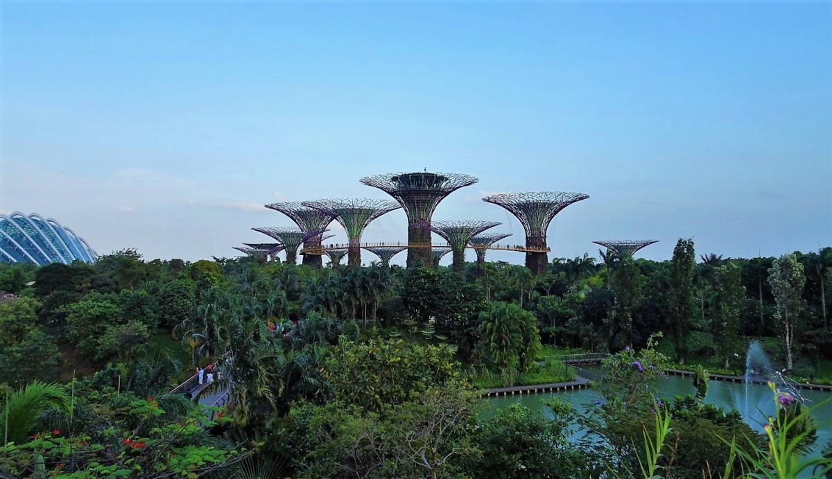 Singapore, Supertree Grove, Gardens by the Bay